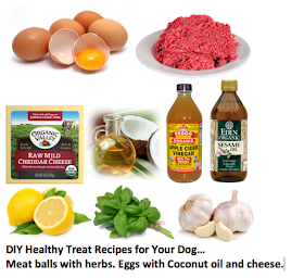 ottawa valley dog whisperer homemade diy natural
