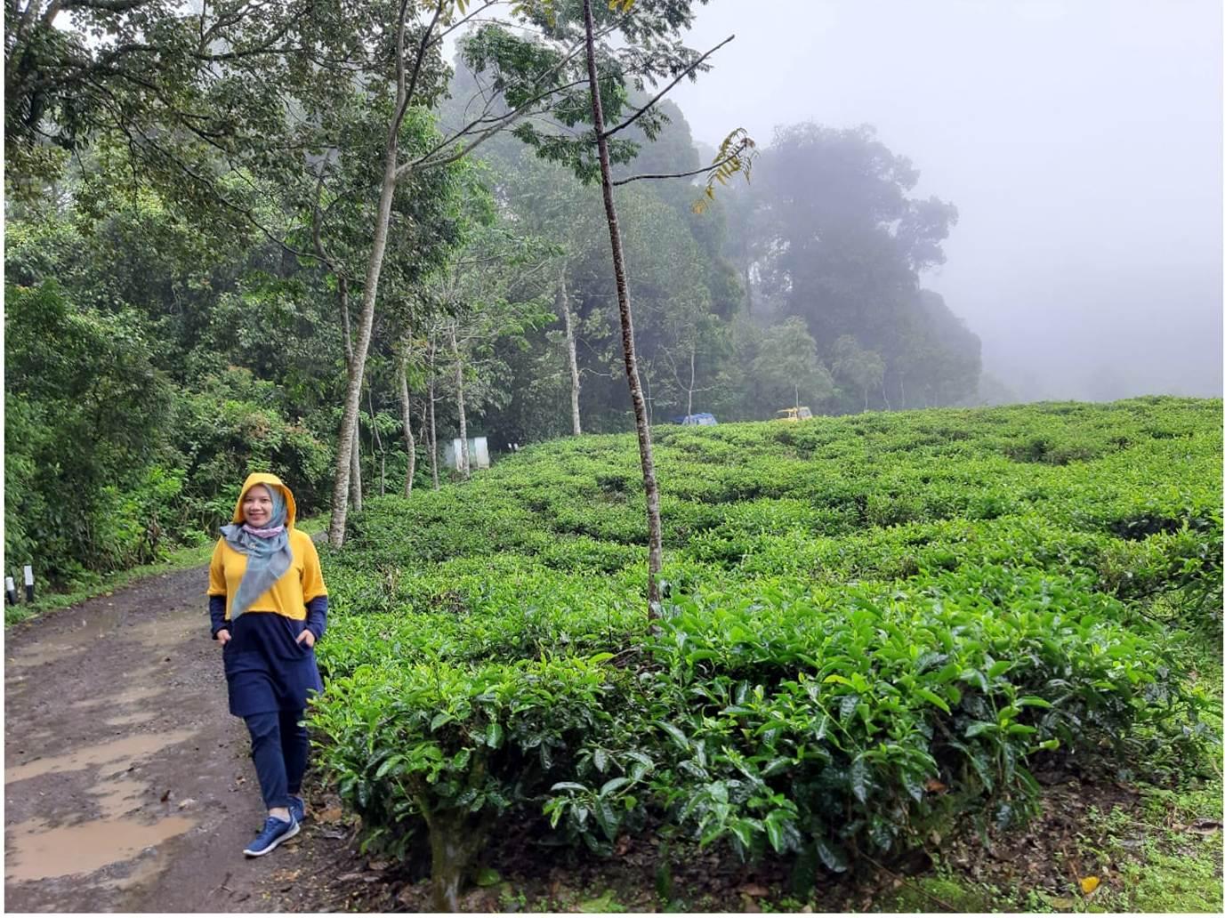 Tips Memulai Menulis Blog Tema Traveling Nurul Sufitri