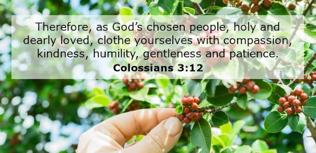 Therefore, as God's chosen people, holy and dearly loved, clothe yourselves with compassion, kindness, humility, gentleness and patience.