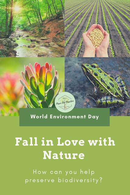 Fall back in love with nature on World Environment Day: Learn how you can help preserve biodiversity