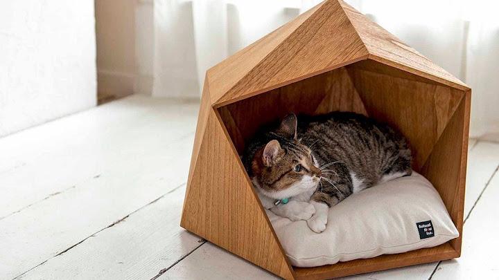 Cama de gato moderna