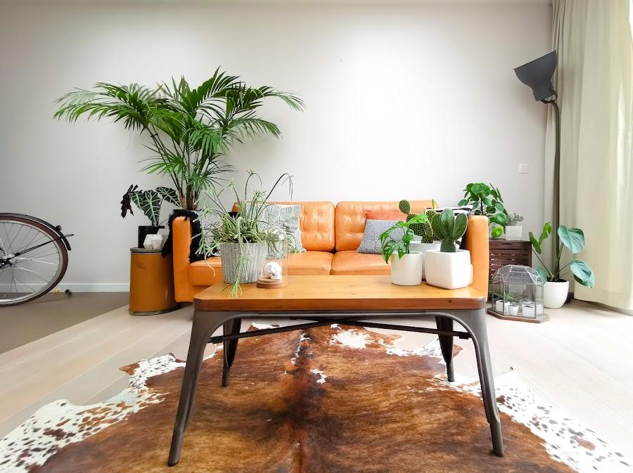 Sofá naranja con mesa de centro de madera y metal