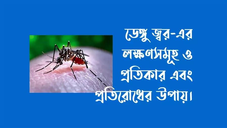 dengue fever paragraph,paragraph dengue fever,dengu fever,symptoms of dengue,dengue,dengue fever symptoms,symptoms of dengue fever,dengue mosquito