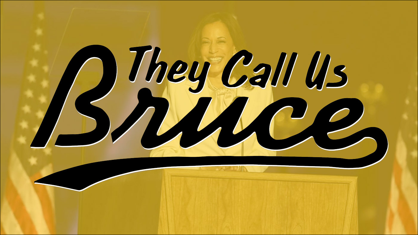 They Call Us Bruce 115: They Call Us Election 2020