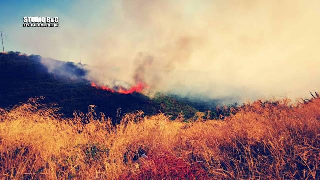 Πυρκαγιά στο Πλατάνι Αργολίδας