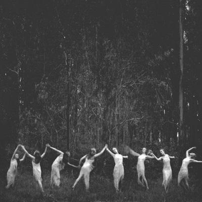 Photographie noir et blanc foret