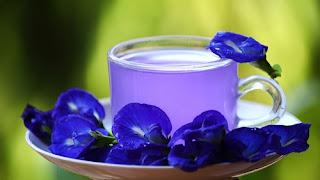 teh-bunga-telang