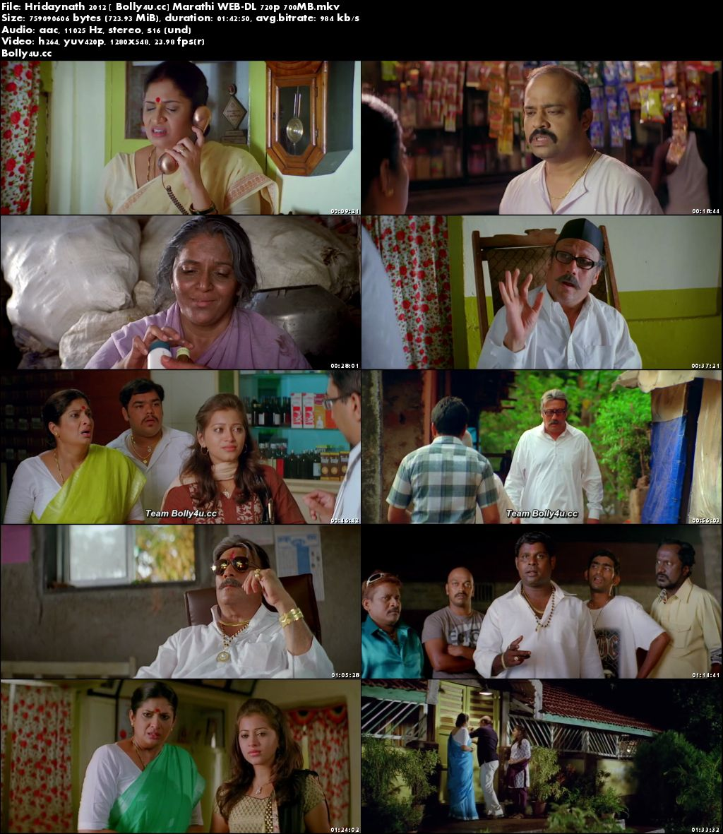 Hridaynath 2012 WEB-DL 300MB Marathi 480p Download