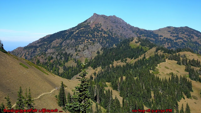 Klahhane Ridge Trail Hurricane Ridge