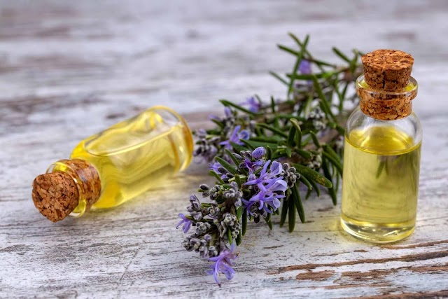 Importance of Rosemary Oil For Hair Loss and Hair Growth