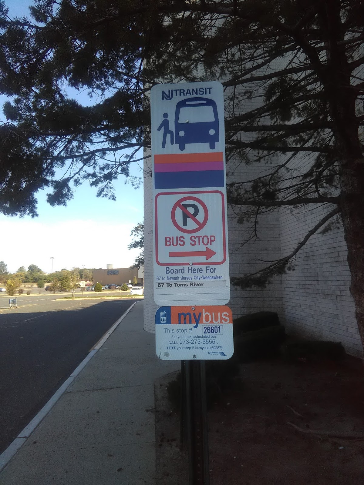 Bicycle San Antonio: Transit System Bus Stop