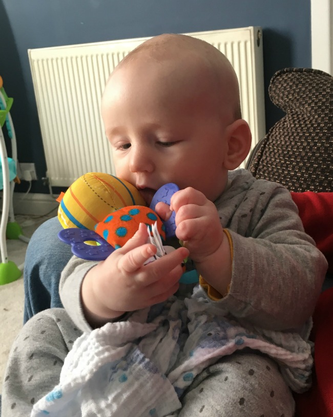 baby-trying-to-get-all-of-amaze-toy-into-his-mouth