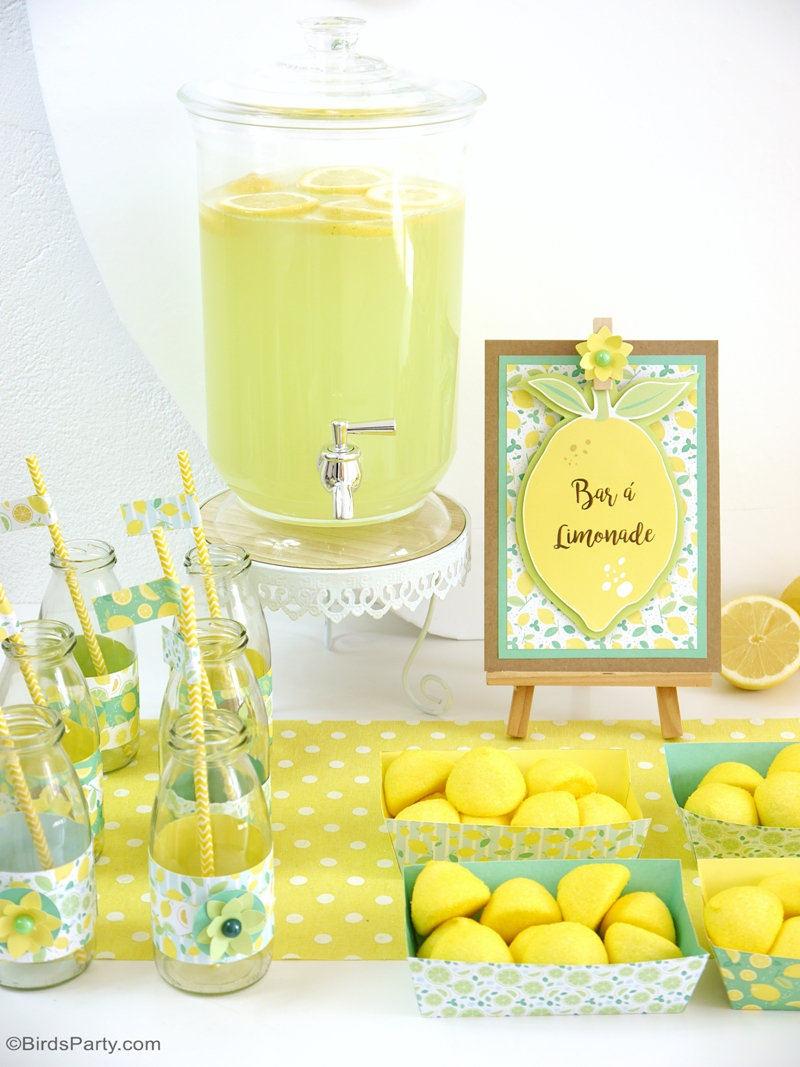 Lemon Themed Party Ideas with DIY Decorations - Party Ideas ...