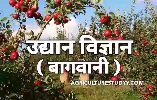 उद्यान विज्ञान (horticulture in hindi) क्या है एवं उसकी शाखाएं