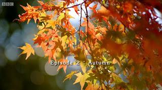 Monty Don's Japanese Gardens - Episode 2 - Autumn