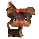 Littlest Pet Shop Multi Packs Shi Tzu (#398) Pet
