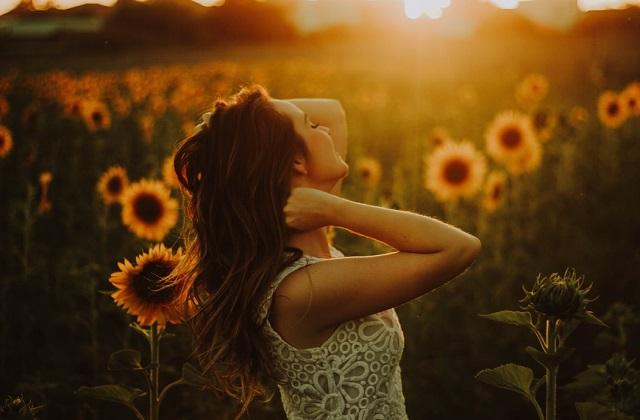 woman sunflower field sunrise