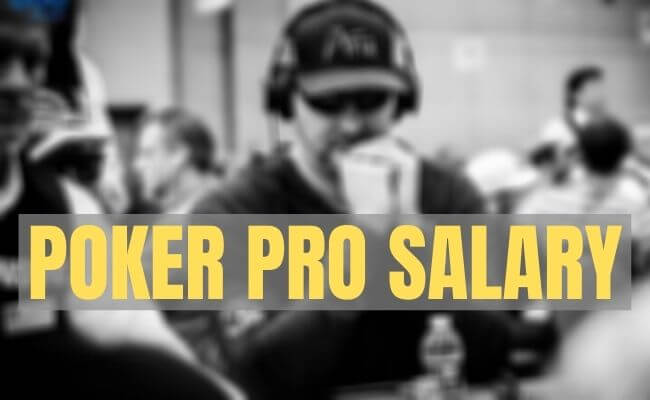 Professional Poker Player Earnings