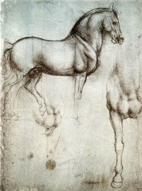 Dibujo de un caballo