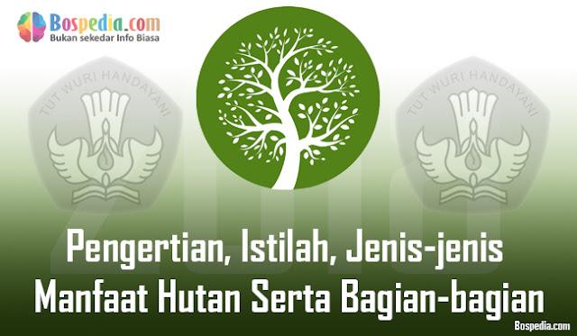 Pengertian, Istilah, Jenis-jenis Manfaat Hutan Serta Bagian-bagian Hutan