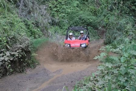 Buggy Driving - Bali, Adventure, Activities, Holidays, Attractions