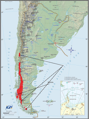 endangered sudamerican mammals