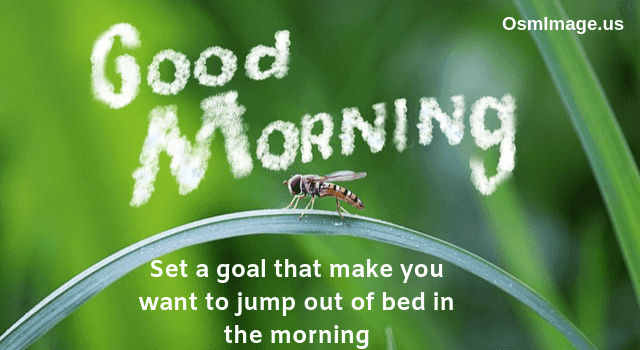 Good-Morning-Images-With-Quotes-for-WhatsApp-Free-Download