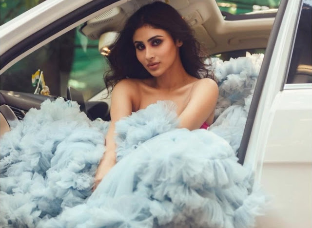 Mouni Roy did a tremendous photoshoot in a cloudy dress, see the latest photos Funny Jokes