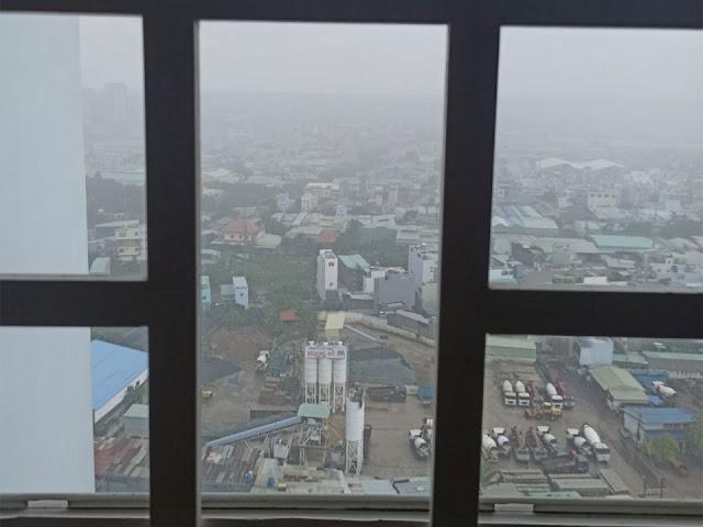 Kiến ba khoang xuất hiện vào những ngày mưa