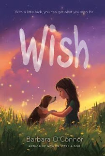 Wish by barbara o'conner book cover children's fiction chapter book