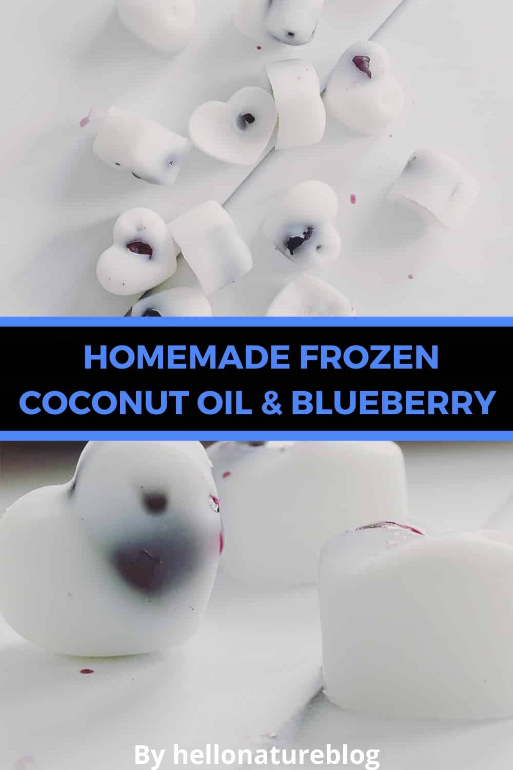 Frozen Coconut Oil and Blueberry Homemade Dog