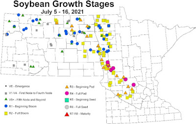 Map of Minnesota and North Dakota indicating growth stages of soybeans in scouted fields
