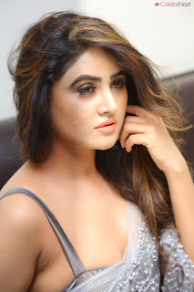 Sony Charishta in Saree and style choli .XYZ Exclusive 17