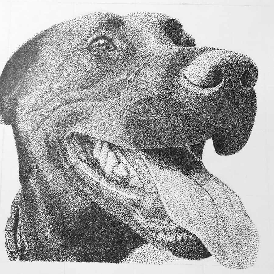 06-Smiling-Dog-Kelsey-Hammerton-www-designstack-co
