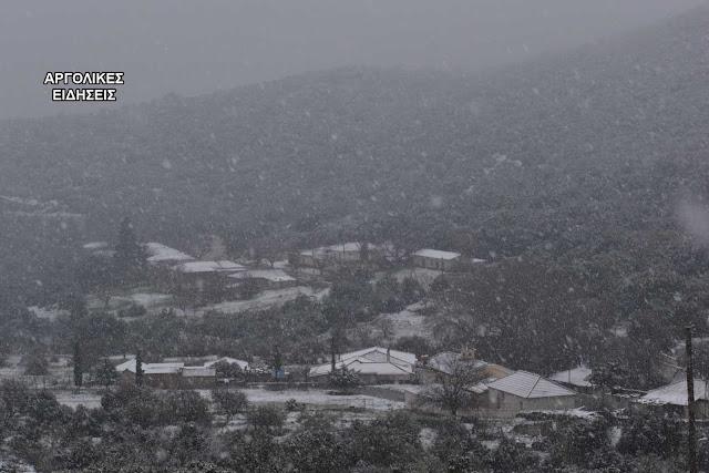 Όμορφα στιγμιότυπα από το χιονισμένο Πλατάνι Αργολίδας