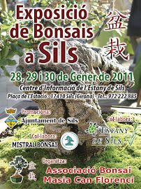 EXPO SILS 2011