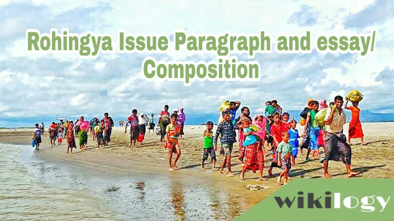 Rohingya Issue Paragraph or essay or composition, Rohingya Crisis in Bangladesh Essay