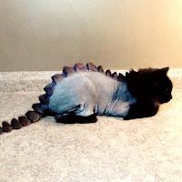 corte de dinosaurio