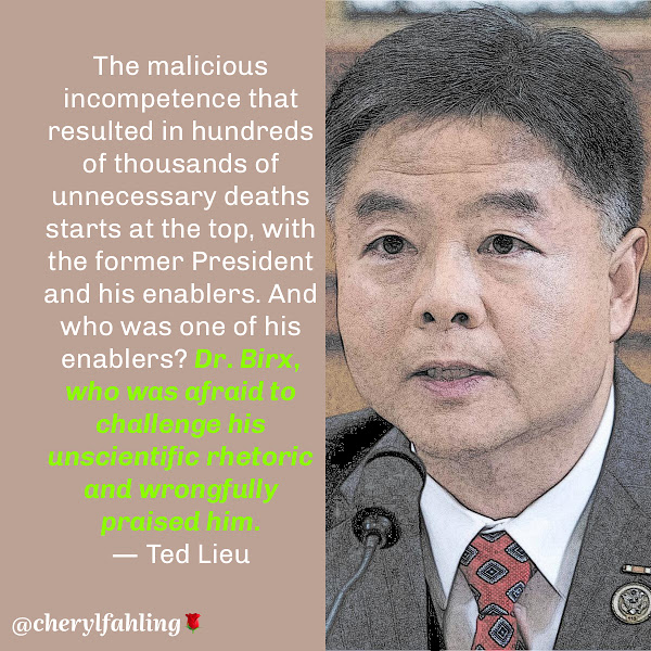 The malicious incompetence that resulted in hundreds of thousands of unnecessary deaths starts at the top, with the former President and his enablers. And who was one of his enablers? Dr. Birx, who was afraid to challenge his unscientific rhetoric and wrongfully praised him. — Democratic Rep. Ted Lieu of California