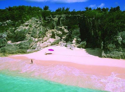 Playa Pink Sands en Isla Harbour