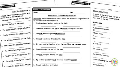 Plural nouns rules quick check quizzes help you quickly assess students.