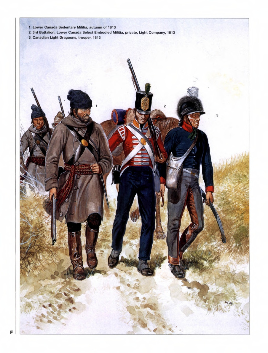 the militia The militia acts of 1792 were a pair of statutes enacted by the second united states congress in 1792 the acts provided for the organization of the state militias.