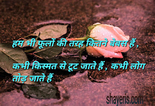 heart Shayari