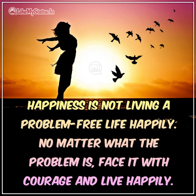 Happiness is not living a problem-free life