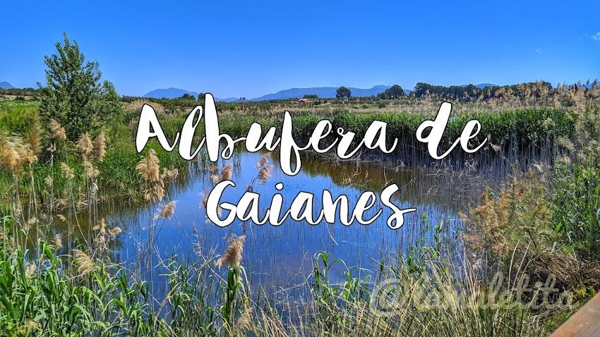 Albufera Gaianes