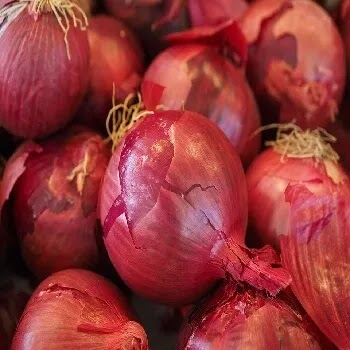 लाल कांदे, red onion vegetables name in Marathi
