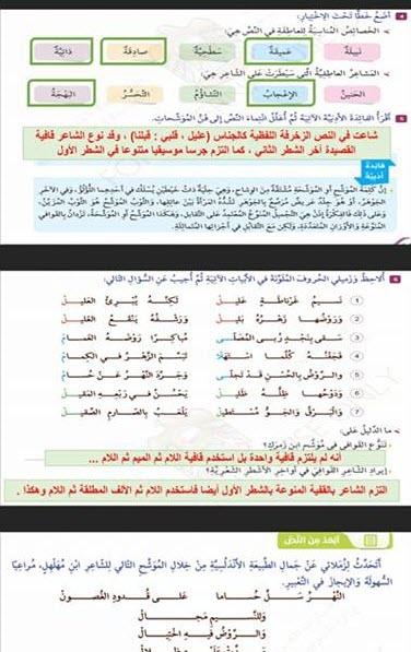 حل درس نسيم غرناطة لغة عربية