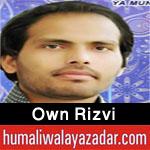 http://www.humaliwalayazadar.com/2016/04/own-rizvi-manqabat-2016.html