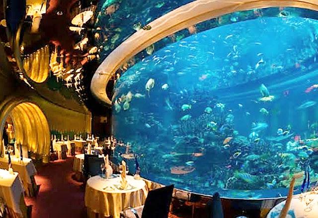 أشهر مطاعم أسماك في دبي