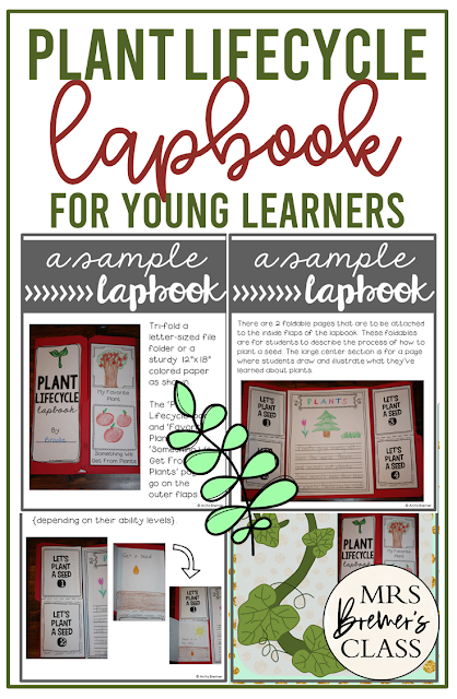 Plant Lapbook activity to teach the life cycle of plants in Kindergarten and First Grade